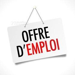 Offre demploi - Traducteur français turc