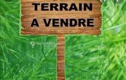 Vente Terrain - Agbavi