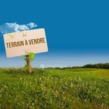 Terrain - Dayane