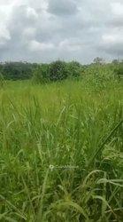 Terrain agri̇cole 15 ha - Agboville