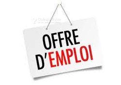 Offre d'Emploi - Hôtesses de vente / Chauffeur