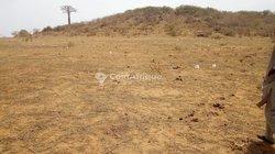 Terrains 150 m2  - Toubab dialao