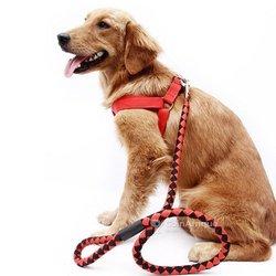Laisse de traction tressée en nylon pour chien