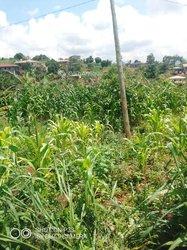 Terrains agricoles - Mbankomo