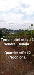 Terrains 1000 m2 - PK12