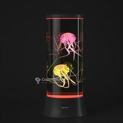 Aquarium lumineuse