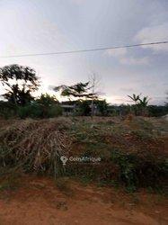 Terrains agricoles 15000 m2 - Ngoumou