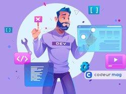 Offre d'emploi - Développement web