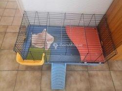 Cage de lapins