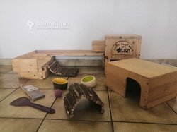 Équipements en bois pour lapin