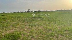 Terrain agricole 5.22 hectares - Koul