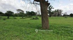 Terrain agricole  1,05 hectare - Keur Ndiaga
