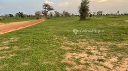 Terrain agricole 5507 m² - Koul