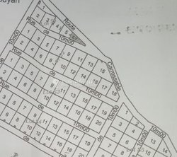 Terrain 3000 m2 - Kouria/coyah