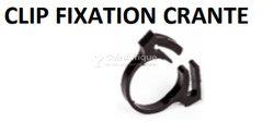 Clip fixation crante
