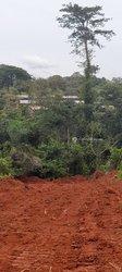 Terrains agricoles - Akounou