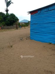 Vente terrain - Kinshasa