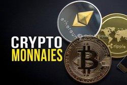 Conseil en cryptomonnaie