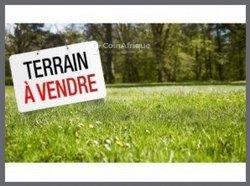 Terrain agricole 25 ha - Assinie