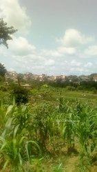 Terrains agricoles 2 ha - Ovangoul