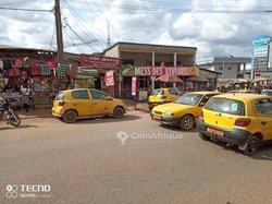 Terrains 769 m2 - Yaoundé