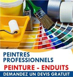 Peintres professionnel