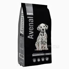 Croquette Avenal Dog