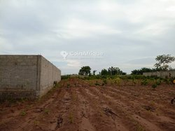 Vente Parcelle 400 m² - Ouedo