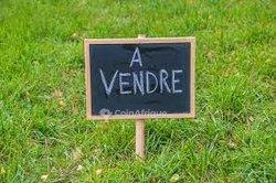 Vente terrains 500 m2 - Yaoundé