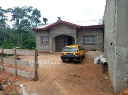 Terrains 500  m2 -Yaoundé