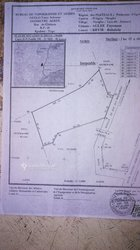 Vente terrain 2ha - Nyogo