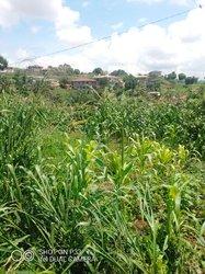Terrain agricole 9 ha - Mbankomo Yaoundé