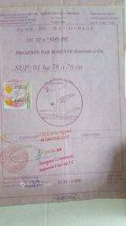 Vente terrain 5000 m² - Yaoundé