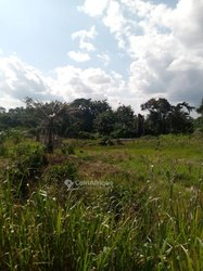 Terrains agricoles 10000  - Agboville