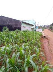 Vente terrains 500 m² - Yaoundé
