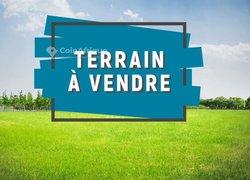 Terrains 3000 m2 - Douala