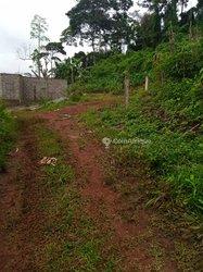 Vente terrains 5000 m²  - Yaoundé