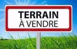 Terrain 40 ha - Marcory
