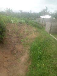 Terrain 230 m2 - Yaoundé