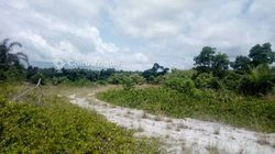 Vente Terrain 3 hectares - Assouindé
