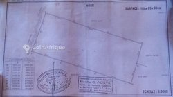 Vente Terrain agricole 10 ha - Abomey