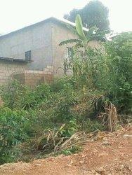 Terrain - Yaoundé