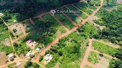 Vente Terrain - Yaoundé-Nkometou