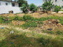vente terrain 600 m2 cocody
