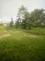vente terrain 7000 m² - bingerville