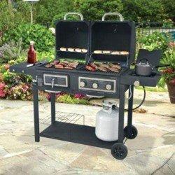 Barbecue à gaz et à charbon