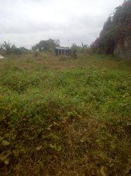 vente terrain 2000 m2 - cocody