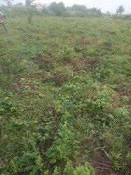 vente terrain 400m² abobo