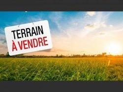 vente terrains 500 m2 - bingerville