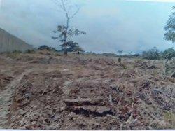 Vente terrain 3.000 m² - Malibe